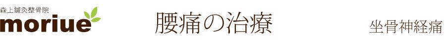 長野県須坂市|森上鍼灸整骨院|腰痛の治療|坐骨神経痛